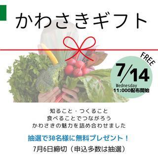 かわさきギフトの無料プレゼント!! 規格外含む地元お野菜・お菓子...