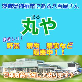 神栖市にある八百屋の丸やです!新鮮野菜販売中!