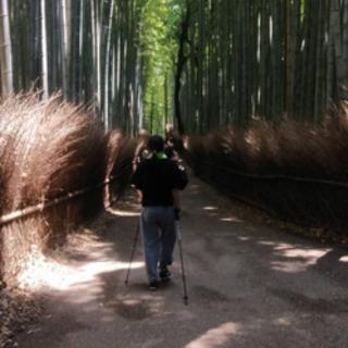 嵯峨嵐山平日午前中ノルディックウオーキング教室