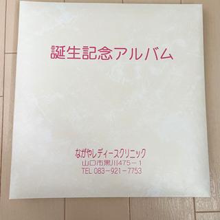 誕生記念アルバム 1