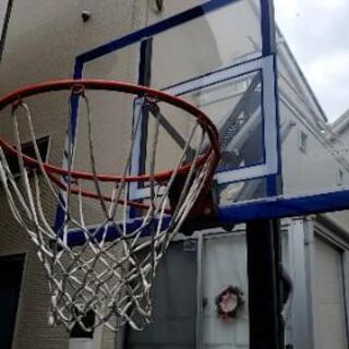 【ネット決済】LIFETIMEバスケットゴールとボールリターン