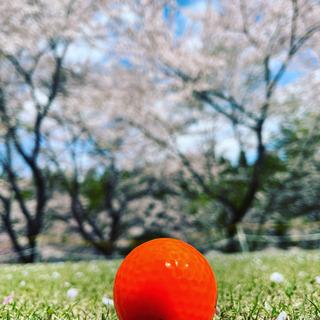 ゴルフパートナー募集😂