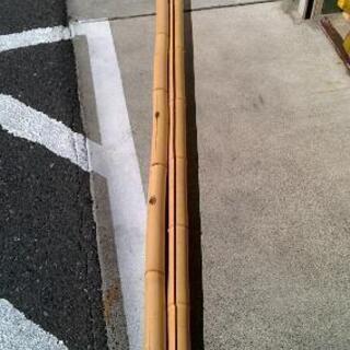 白竹 全長約2950ミリ