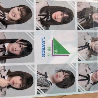 欅坂46×LAWSON クリアファイル