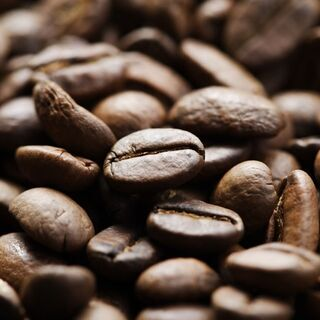 【開催直前!!】ドリップチャンピオンが教える 「ハンドドリップ&スイーツペアリング」コーヒーセミナー - 料理