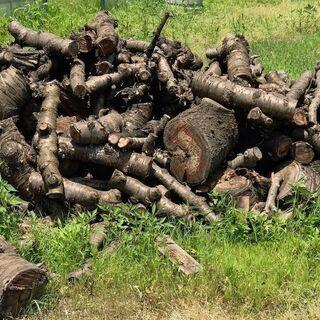 薪ストーブ用の薪