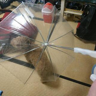 新品未使用!ペットアンブレラ 犬用傘ワンちゃん散歩用傘