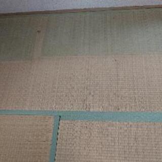 タタミ6畳分×2部屋分 差し上げます❗