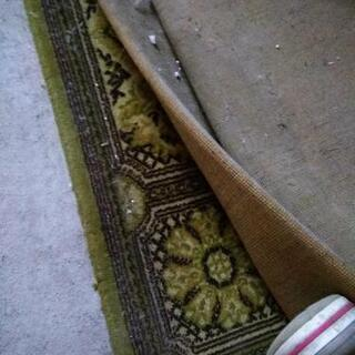 大きな絨毯