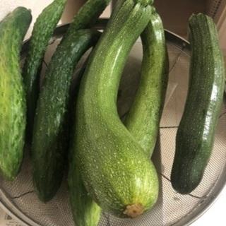 うちなり野菜