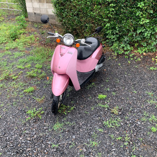【ネット決済】トゥデイ 4スト 原付 バイク 50cc   車体
