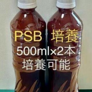 ☀1L PSB 光合成細菌☀