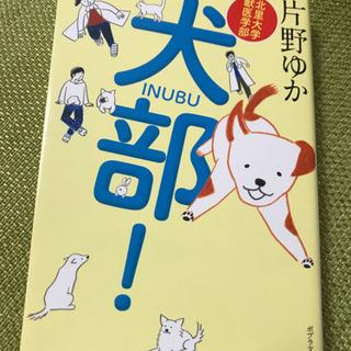 【北里大学獣医学部 犬部!】片野 ゆか
