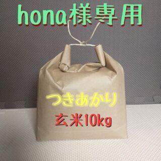 【ネット決済・配送可】【貴重】つきあかり 玄米10kg【個人向け...