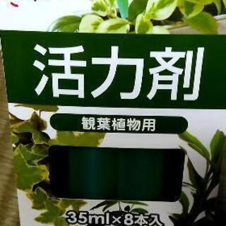 観葉植物 活力剤