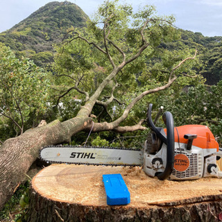 草刈り 雑木林の伐採 剪定
