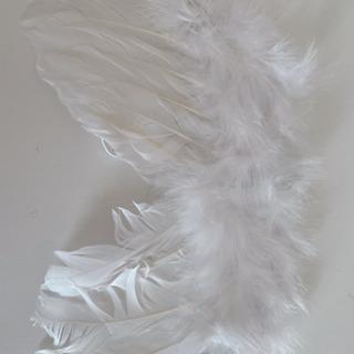 ベビーフォト*天使の羽