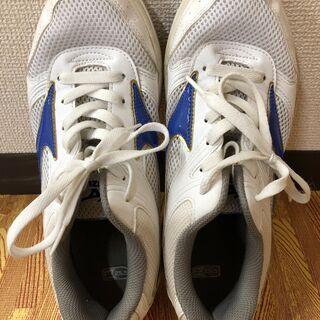 ミズノ シューズ 室内履き 紐靴