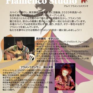 ギター教えます フラメンコ(伴奏からソロまで)・ラテン・ボサノバ...
