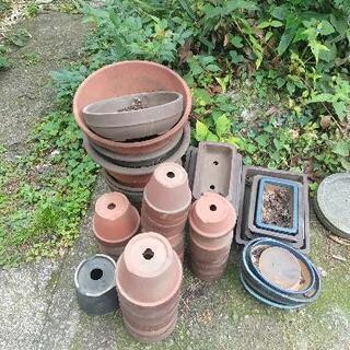 古い植木鉢差上げます