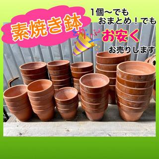 ✨インテリアハウス✨小さめ素焼き鉢❣️お安くお売りします♪