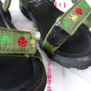インセクトコレクション 18cmスポーツサンダル - 川越市