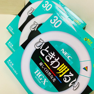【直接引取り限定】新品未使用 NEC FCL30EX-N/28-...