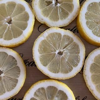 低温乾燥 無農薬レモン