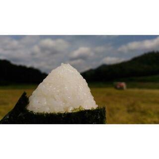 令和2年 美味しい阿東米!コシヒカリ玄米30kg  有機肥料栽培...