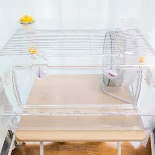 ペット用品 小動物ケージ ケース 飼育セット
