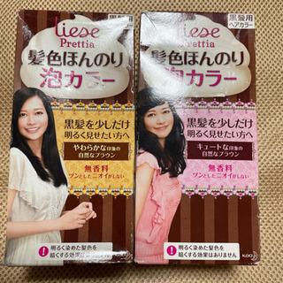 【ネット決済】黒髪用 ヘアカラー 髪色ほんのり泡カラー 2個セット