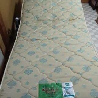 電動リクライニングフランスベッド