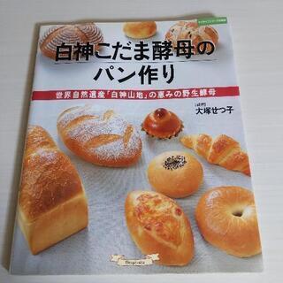 🎐夏休み 親子でトライ!初めてでも🆗白神こだま酵母のパン作り 世...
