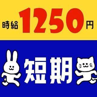 【No.6449】夏★大洗でホールスタッフ★7/19~9/12の...