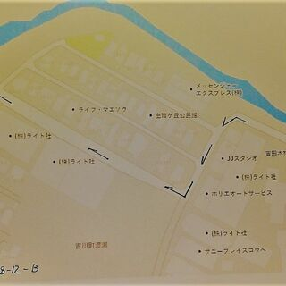 国産カブトムシ(三木市口吉川町産CBF1)成虫オスメスペア5...