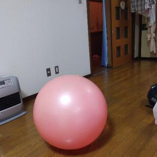 【ネット決済】トレーニングボール