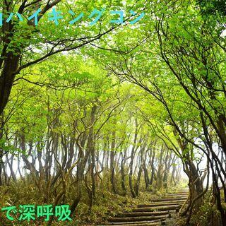 第1回 秩父・宝登山ハイキングコン【真夏の山巡りver.】