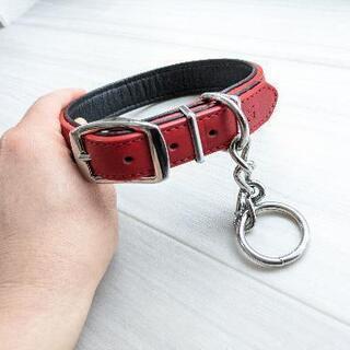 犬の首輪②