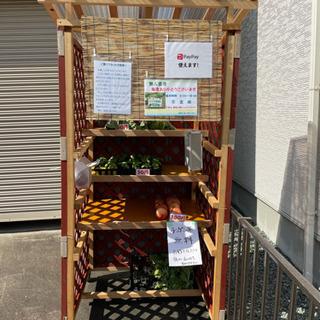 松阪で無人販売してます。50〜100円