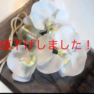 胡蝶蘭 和装ヘアアクセサリー