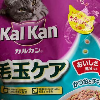 【ネット決済・配送可】猫の餌