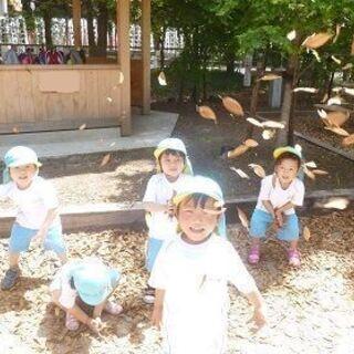 【幼稚園教諭】遊びを大切にした幼稚園の保育補助および預かり保育教...