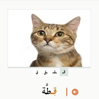 アラビア語をゼロから学ぼう