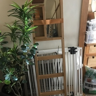 IKEA竹 ミラー付 ハンガーラック