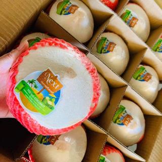【ネット決済・配送可】ダイヤヤングココナッツ