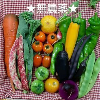 【ネット決済】★無農薬★野菜セット