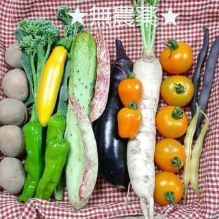 【ネット決済】★無農薬★12種の野菜セット