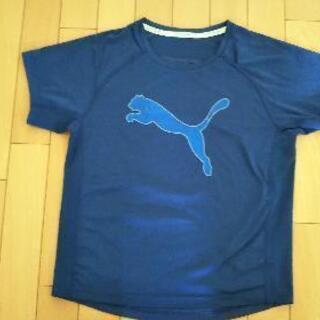 プーマ 150センチTシャツ