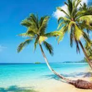 タイ語   コロナ明けに備えて「ひとり旅ができるまで」を30時間で!