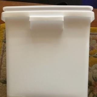 めだかの飼育白容器 めだかプレゼント付き 暑い季節は白容器で